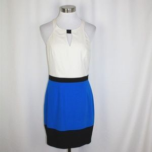 Stunning Jay Godfrey Silk Color block Dress 8 NWT!